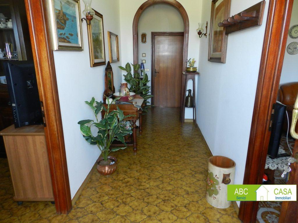 giardino-BIFAMILIARE-in-vendita-Vada-R1015