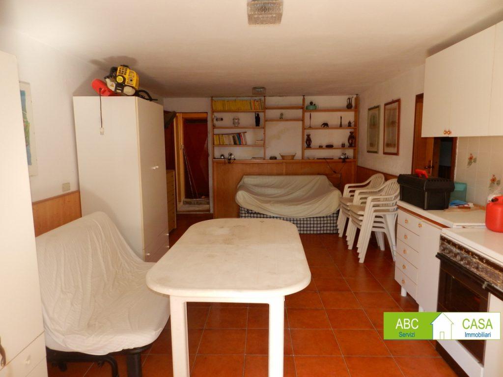 giardino-APPARTAMENTO INDIPENDENTE-in-vendita-Castiglioncello-R0978