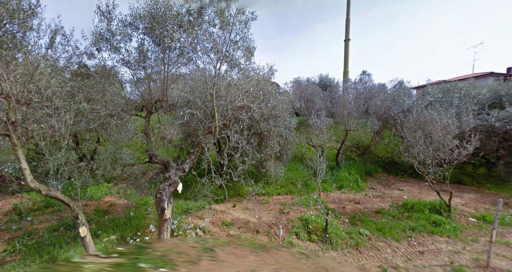 esterno-AREA EDIFICABILE-in-vendita-Rosignano Solvay-R0656