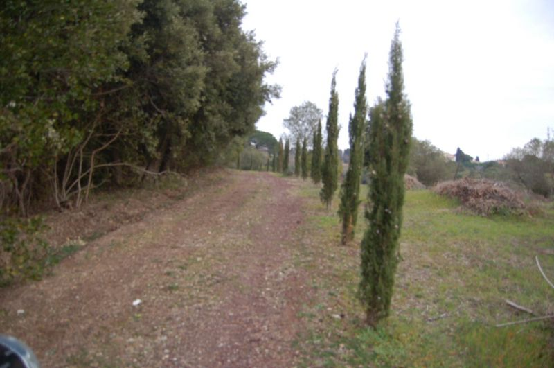 giardino-CASA INDIPENDENTE-in-vendita-Rosignano Marittimo